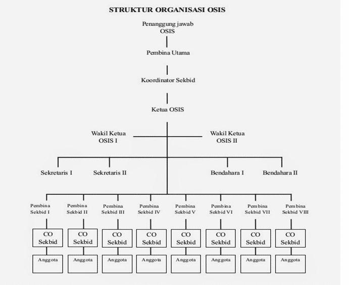 struktur-osis